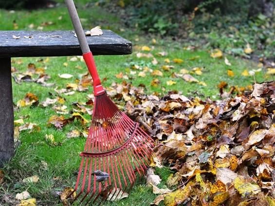 Aia- ja haljastusjäätmete tasuta äravedu algab 26. oktoobril