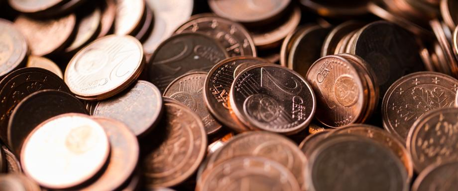 Komisjon kinnitas Eesti seisukohad miinimumpalga direktiivi eelnõu kohta